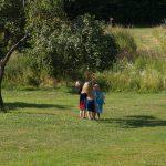 Drie kinderen proberen fruit uit de boom te plukken