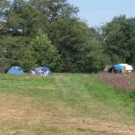 Tenten op een kampeerveld en veldbloemen