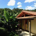 Geel sanitairgebouw met palmbomen