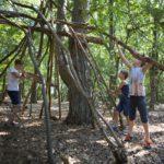 Kinderen bouwen een hut van houten stokken
