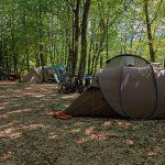 Tentjes op de camping