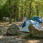 Tentenveldje onder de bomen