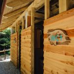 Modern sanitair, gebouw van robuuste houten balken