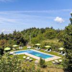 Een L-vormig zwembad omringd door groen, met ligbedden en parasols in het gras.