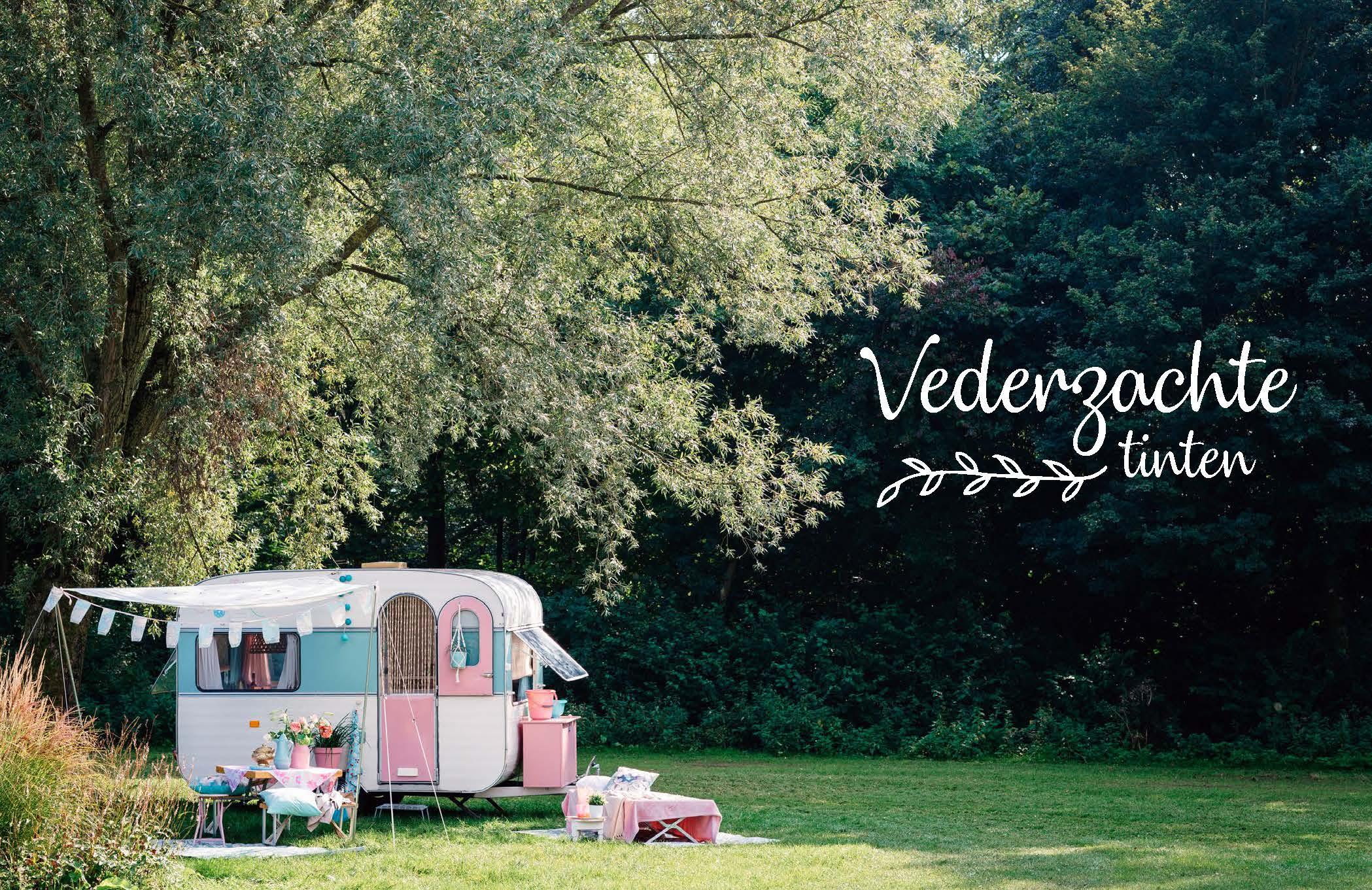 Een roze, blauw, witte caravan in het groen.