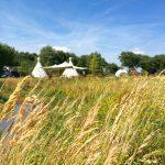 Een grasveld langs een beek met in de verte tipitenten van Camping Bij Ons in Groesbeek.