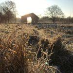Winter bij camping de Voscheheugte, een trek in een veld vol rijp