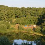 Meertje met tenten aan de rand en een bos op de achtergrond
