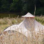 Een beige tent tussen het hoge droge gras