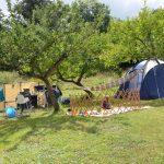 Kindvriendelijke camping met slechts enkele kampeerplekken, een tent met een kindje ervoor