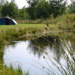 Een blauwe koepeltent aan de rand van een meertje op Camping Fraai
