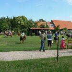 Kinderen op pony's op het gras, met toekijkende moeders