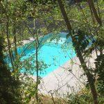 Het zwembad op de camping, verstopt tussen het groen