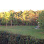 Het kampeerveld met de zon op de toppen van de bomen.