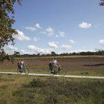 Opa en oma met de kleinkinderen op de fiets, in het mooie Drenthse heide landschap
