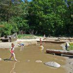 Een kind loopt van steen naar steen in het water