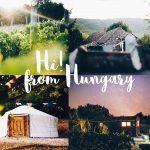 Een collage met foto's van Dutch Hill met daarop de wijngaard, de yurt, een blokhut en het huis.