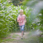 Een jongen rent door het maisdoolhof.
