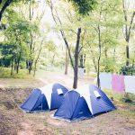 Twee kleine tenten tussen de bomen.