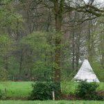 Een tipi tent op een grasveld tussen de bomen door
