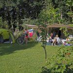 Een gezin kampeert met de tent op een groen veld met bomen op de achtergrond.