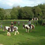 Kinderen aan het paardrijden in de wei