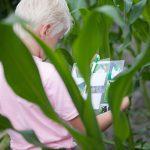 Een jong probeert een puzzel op te lossen in het Maisdoolhof
