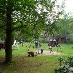 Tussen de bomen spelen op de camping