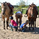 Twee paarden die door twee kinderen verzorgd worden.