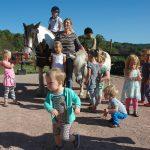 Kinderen van 1 tot 10 jaar rondom één van de paarden