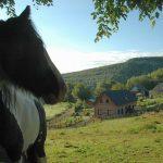Uitzicht over het terrein van Morvan Rustique