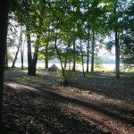 Tent kamperen tussen de bomen
