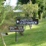 Bordjes met Italiaanse teksten voor de verkoop van olijfolie