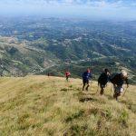 Een rijtje wandelaars op een heuvel in het glooiende landschap van De Marken