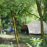 Een beige tent met stoeltjes ervoor en een waslijn vol handdoeken tussen de bomen