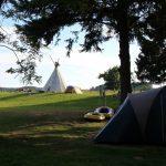 Een tipi onder een boom op een kampeerveld