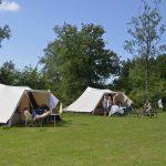 Twee De Waard tenten op een groen kampeerveld