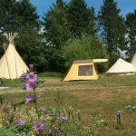 Een kampeerveld op een zonnige dag met een tipi, een vintage bungalowtent en een Bell-tent.
