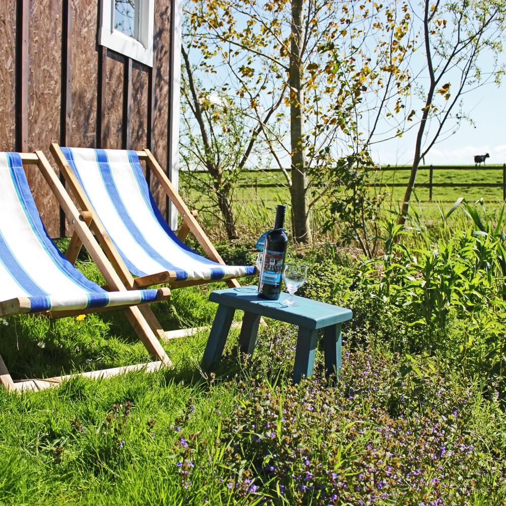 Blauwe witte strandstoelen in het gras