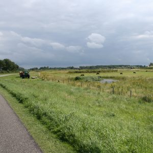 Een landweg met traktor en natuurgebied