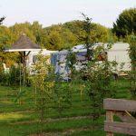 Achter de fruitbomen staan een aantal caravans