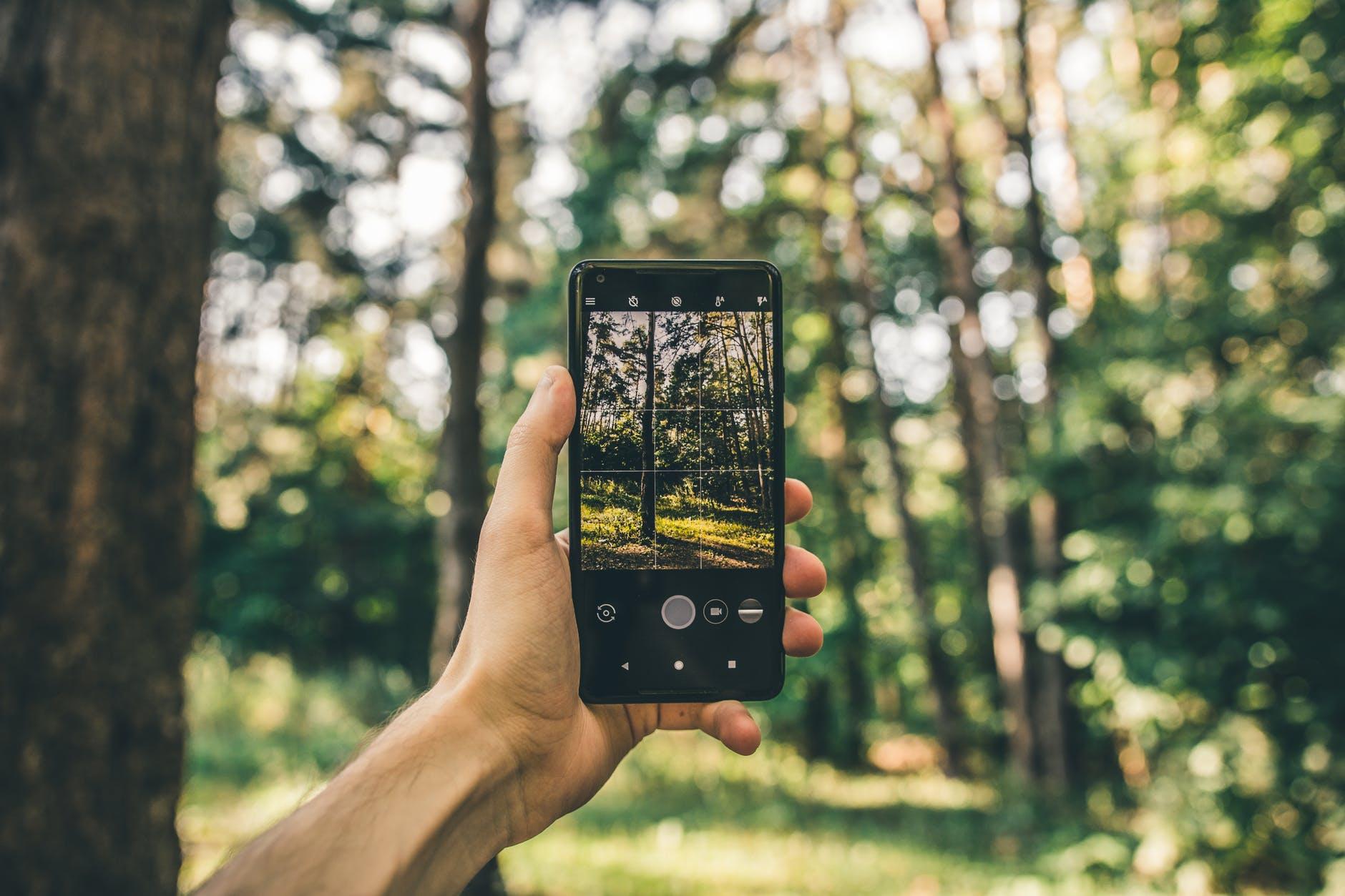 iemand houdt een smartphone in de lucht, in het bos
