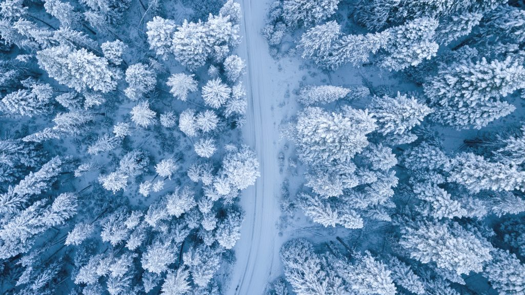 Drone view van een winters landschap met besneeuwde bomen