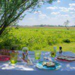 Een gedekte ontbijttafel met weids uitzicht over de weilanden.