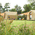 Twee design Ecolodges van hout op het kampeerveld.
