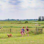 Kinderen rennen door een weiland achter een hond aan, met op de achtergrond schapen in de wei.