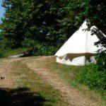 Een Bell tent in het groen
