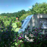 Een caravan achter een heg, omgeven door groen.