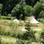 Tenten omringd door struiken en bomen.
