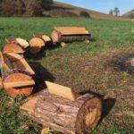 Een gezellig halfrond zitje rond de kampvuurplek op een open veld, gemaakt van boomstammen